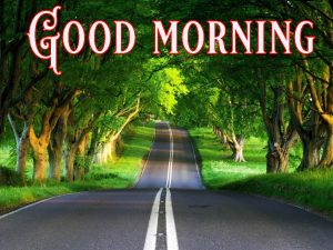 Good Morning Greetings images Wallpaper Photo Free Download