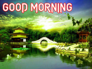 Good Morning Images pictures pics download