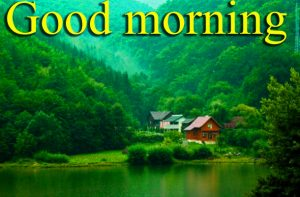 Very Nice Special Good Morning Images Pictures Pics Free HD