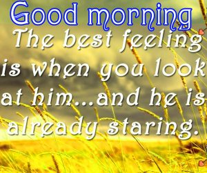 Sweet Romantic Good Morning Quotes For Him In Hindi Images Wallpaper Pics Free HD