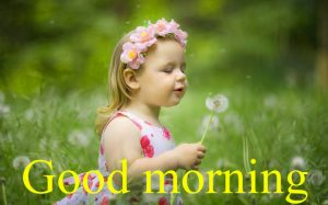 Very Nice Special Good Morning Images Pictures Pics Download