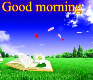 Good Morning Images For Facebook Timeline Wallpaper Photo Pics Free HD