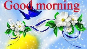 Very Nice Special Good Morning Images Pictures Pics Photo Download