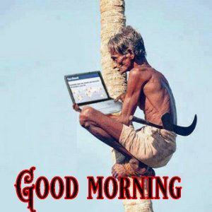 Good Morning Greetings Funny Images Pictures Wallpaper Free Download