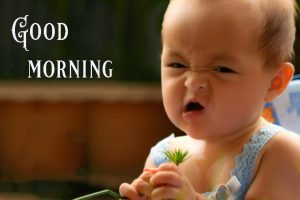 Good Morning Greetings Funny Images Wallpaper Pics Download