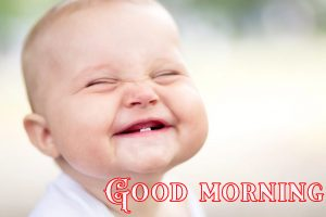 Good Morning Greetings Funny Images Wallpaper Photo Free Download