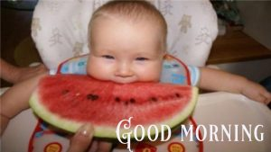 Good Morning Greetings Funny Images Wallpaper Photo HD