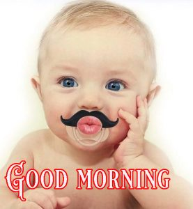 Good Morning Greetings Funny Images Wallpaper Photo Download