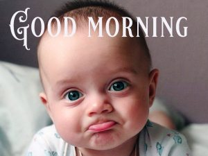 Good Morning Greetings Funny Images Wallpaper Photo Free HD