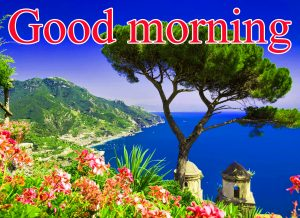 Good Morning Images For Facebook Timeline Wallpaper Photo Pics HD For Whatsapp
