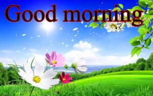 Good Morning Images For Facebook Timeline Wallpaper Photo Pics Free HD Download