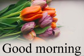 Good Morning Images For Facebook Timeline Wallpaper Photo Pics Free Download