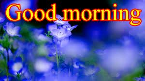 Good Morning Images For Facebook Timeline Photo Pictures Free HD