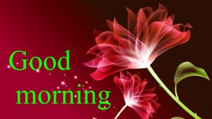 Very Nice Special Good Morning Images Wallpaper Pictures Download