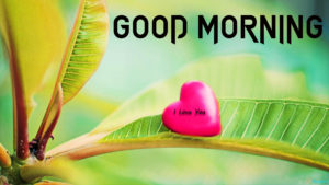 Lover good morning Images wallpaper photo hd