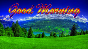 Nature Good Morning Wishes Images wallpaper photo hd download