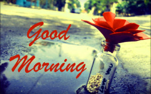 Romantic good morning honey i love you Images photo wallpaper hd download