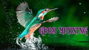 Suprabhat Good Morning Images Pictures Photo Download