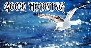 Suprabhat Good Morning Images Pictures Photo HD