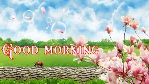Suprabhat Good Morning Images Pictures Photo Pics Free HD
