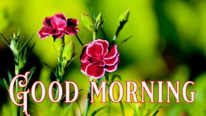 Suprabhat Good Morning Images Pictures Photo Pics HD