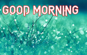 Special Good Morning Images photo pictures free download