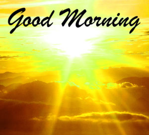 Sunshine Good Morning Images wallpaper pictures free hd
