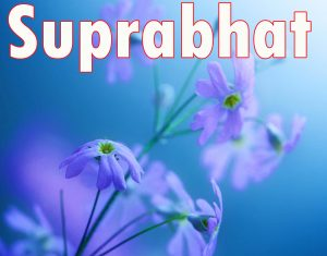 Latest HD suprabhat images with flowers Images Photo Pictures Free HD Download