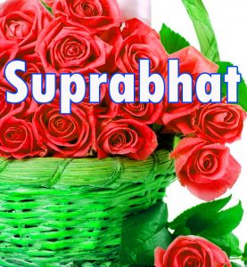 Latest HD suprabhat images with flowers Images Photo Pictures Download