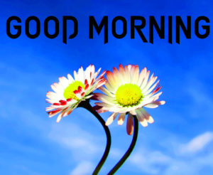 Very Sweet Good Morning Images wallpaper photo hd download