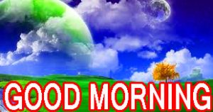 Best All Good Morning Images Pictures Pics HD