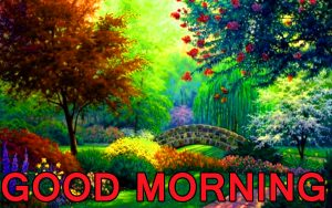 Best All Good Morning Images Pictures Pics Free Download