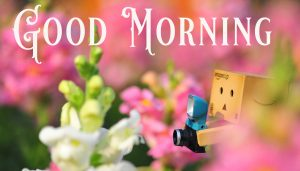 Cute Good Morning Images Wallpaper Pictures Pics Download For Facebook