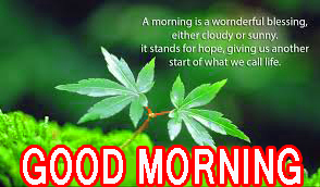 Good Morning Beautiful Quotes Images Pictures Pics Photo HD