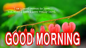 Good Morning Beautiful Quotes Images Pictures Pics Pictures HD