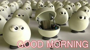Funny Good Morning Images Wallpaper Pics HD For Whatsapp