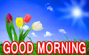 Latest good morning images Pictures Wallpaper Download