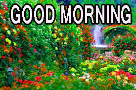Latest good morning images Photo Wallpaper Free HD Download