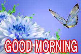 Latest good morning images Wallpaper Pics Pictures HD
