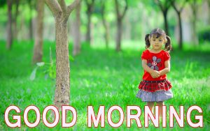 Latest good morning images Wallpaper Pics Photo HD Download