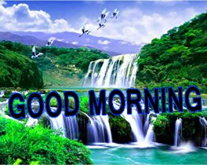 Latest good morning images Wallpaper Pics Pictures Download