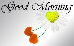 Love Good Morning Images Wallpaper Pictures Download