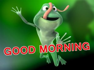 Funny Good Morning Images Wallpaper Pics Download For Facebook