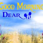 452+ Beautiful Good Morning Images Download For Whatsapp In HD
