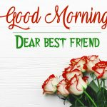 Good Morning Images 569+ Latest HD Good morning Wallpaper Pics