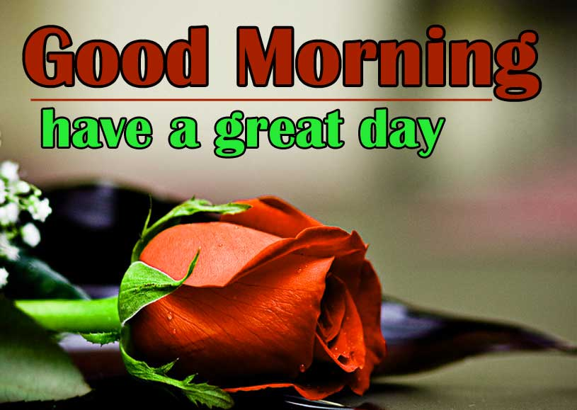 Red-Rose-Good-Morning-Images-13