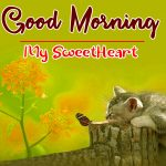 Cute Good Morning Pics