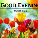 638+ Good Evening Images , Good Evening Images Pics HD Download