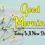 556+ Good Morning All Images Photo Pics HD Download for Facebook