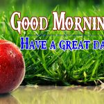44+ Good Morning Friends Wallpaper free { Latest Updated} download for Facebook & Whatsapp